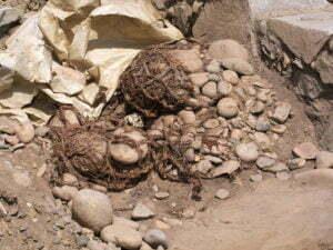 Restes de coton sur le site archéologique de Caral - Pérou