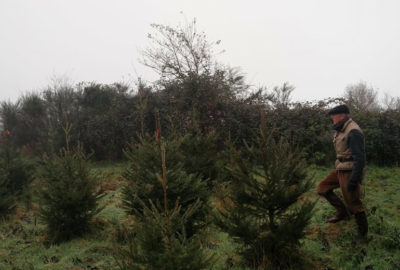 Kraft part à la recherche de vêtements de travail pour forestier