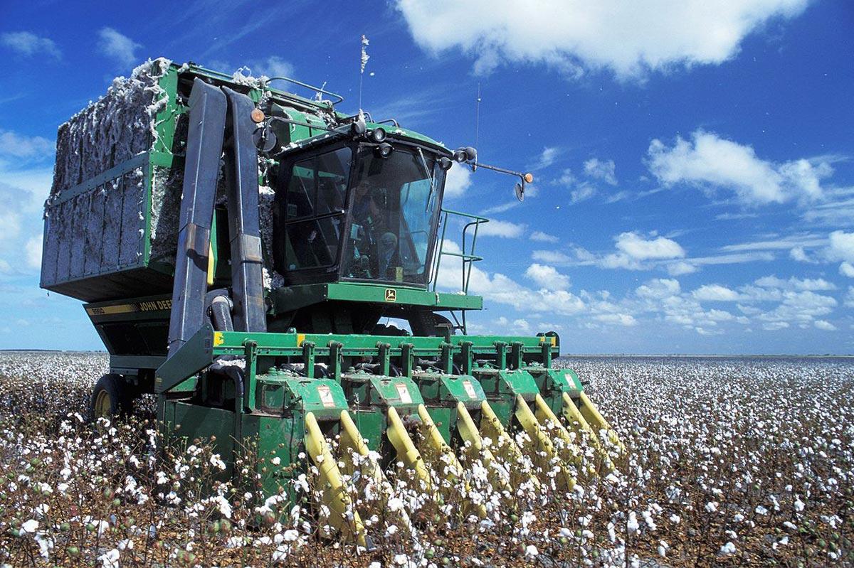machine à récolter le coton